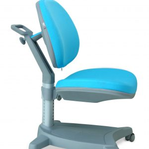C SERIES ERGONOMIC CHAIR 300x300 - C   Series Ergonomic Desk & Chair
