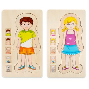 Human body cognition puzzle 300x300 - Kid Weight Bench
