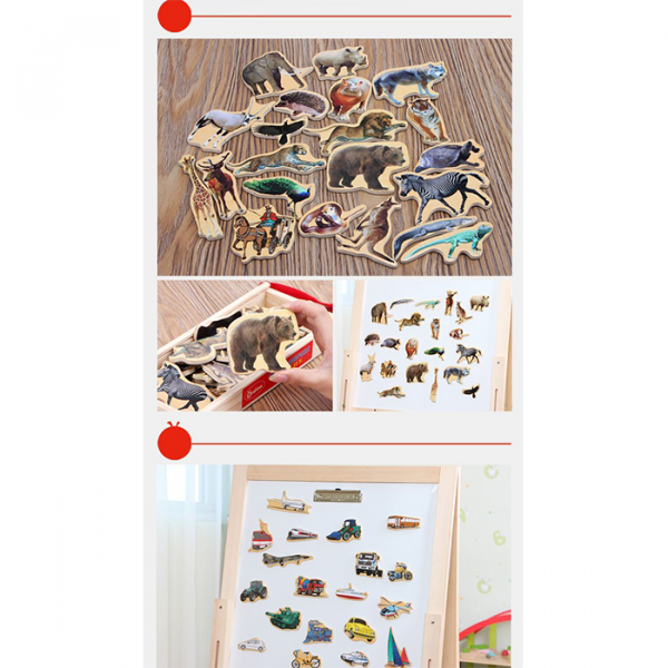 3 4 600x600 - Magnetic  Marine animals, Food items, Vehicles traffic tools